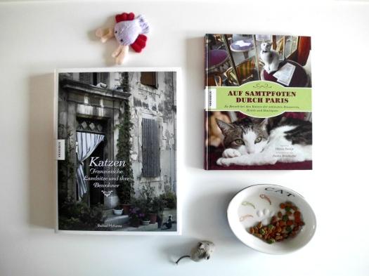 Katzen in Frankreich.JPG