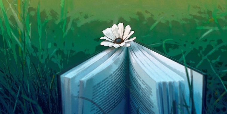 books-flowers-grass-2560x1600-wallpaper.jpg